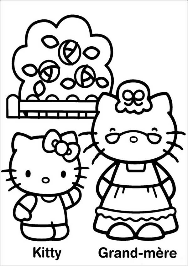 Hello Kitty 15 für kinder